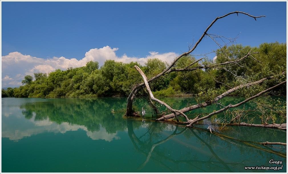 Czarnogóra - rzeka Moraca