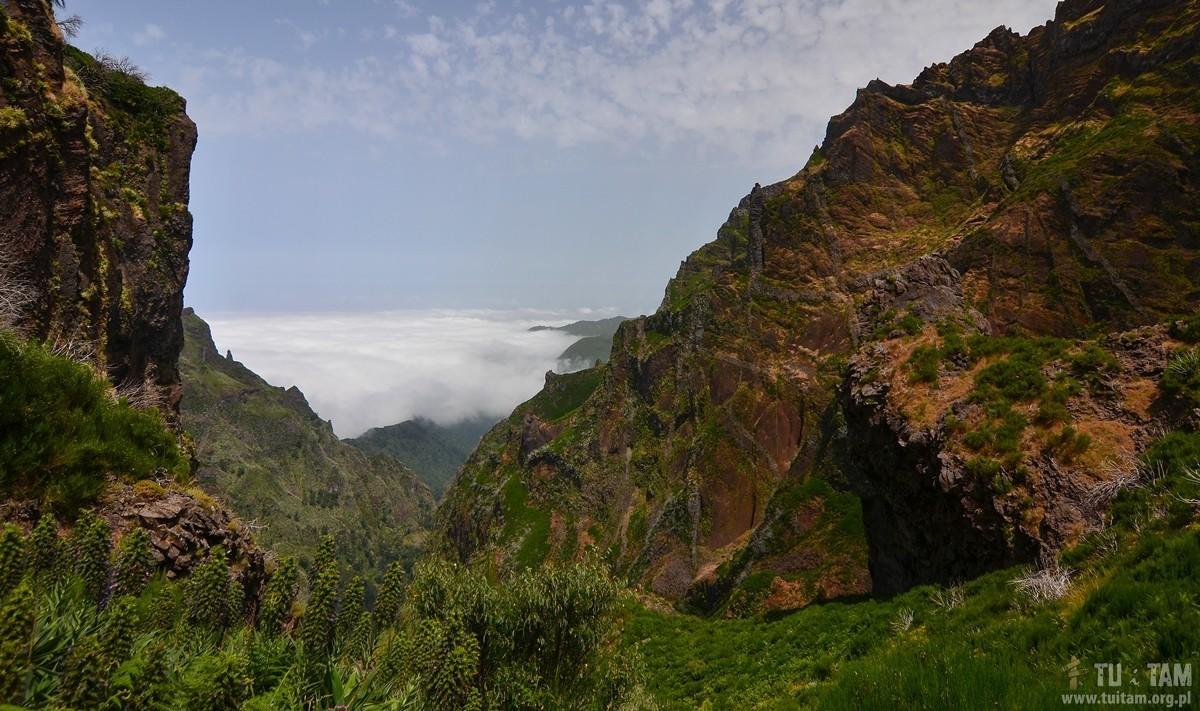 Pico Ruivo szlak