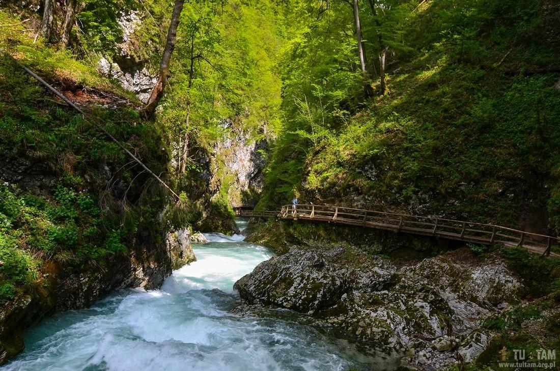 Vintgar, skalny wąwóz w Słowenii