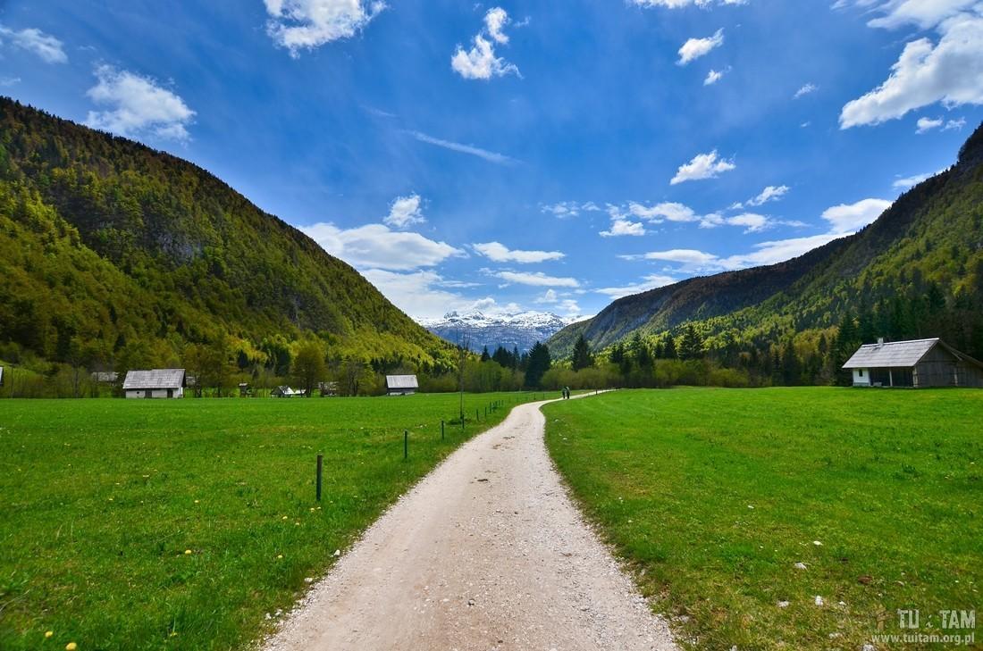 Voje Słowenia