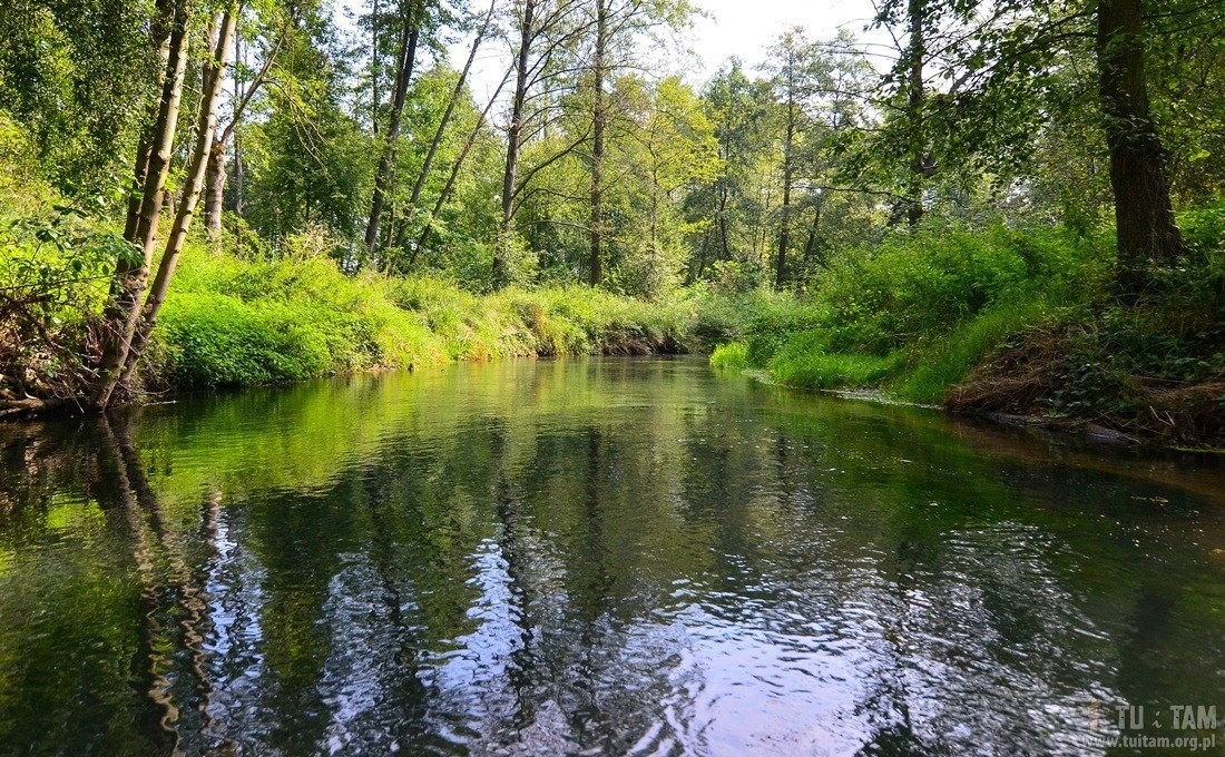 Lelów, spływ rzeką Bialką