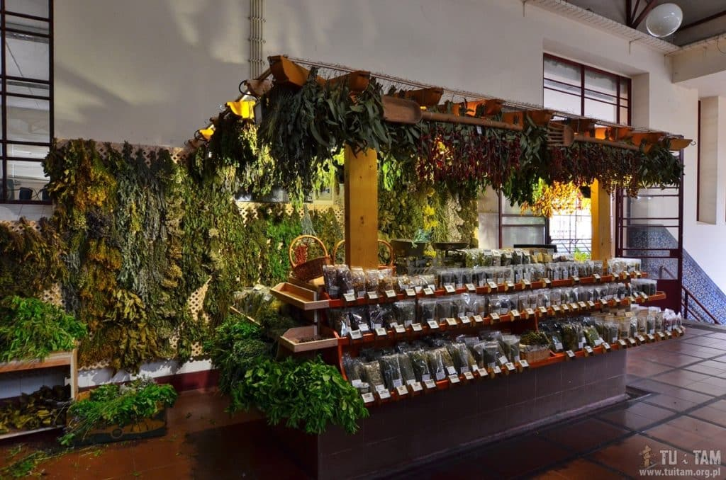 Funchal targ