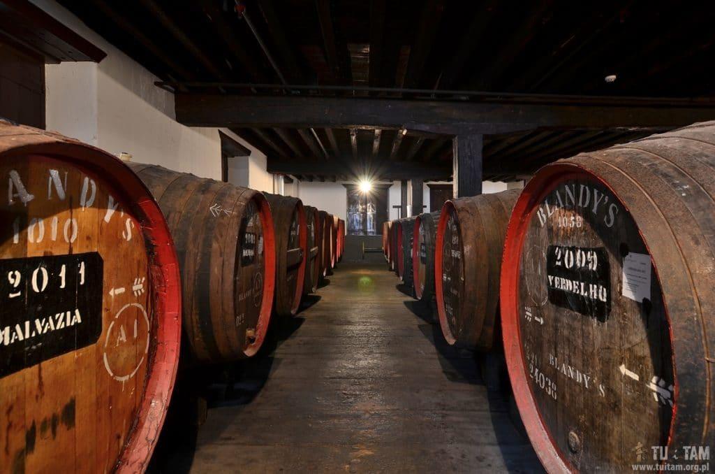 Funchal, winnice Blandys