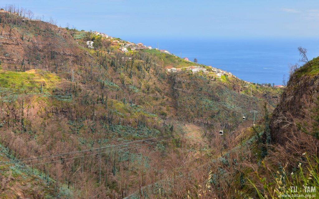 Kolej linowa do Ogrodów Jardim Botânico da Madeira