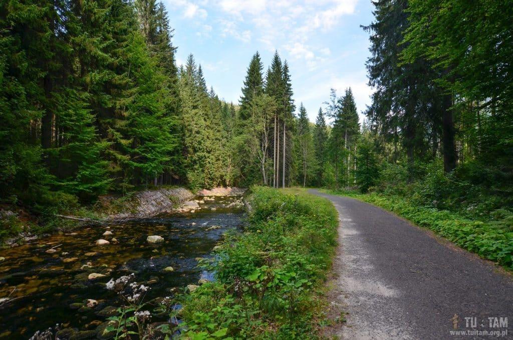 Szpindlerowy Młyn - Dolina Łaby