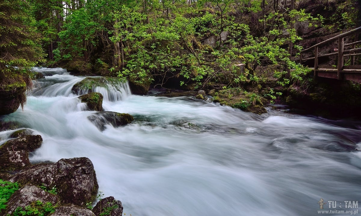 Gollinger potok