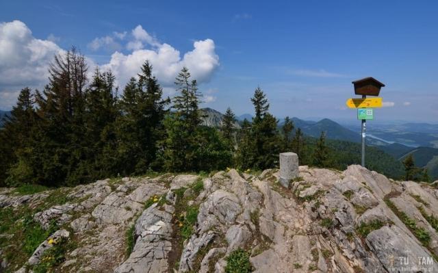 Zwolferhorn, na szczycie