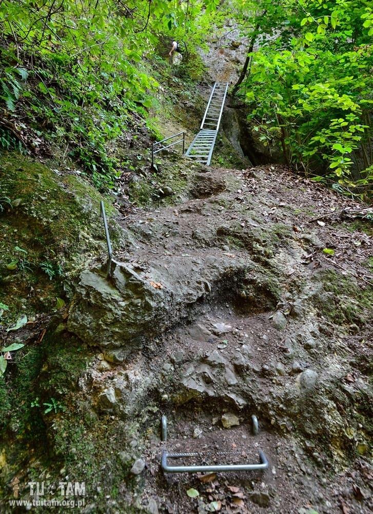 Sulovskie skały - na szlaku do jaskini