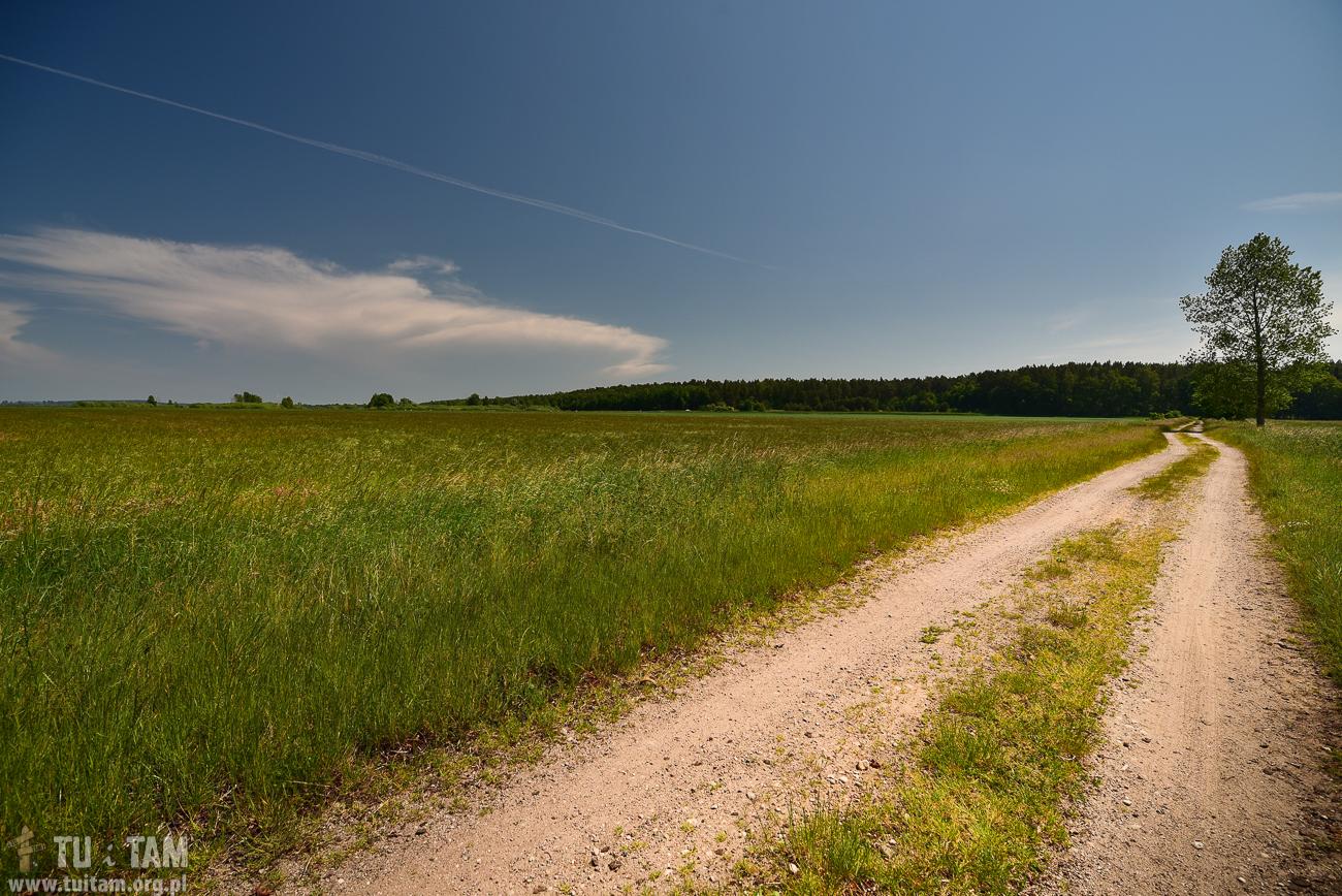 Szlak rowerowy do Krokowej