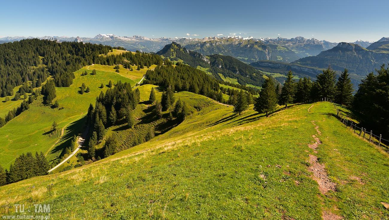 Rigi Scheidegg